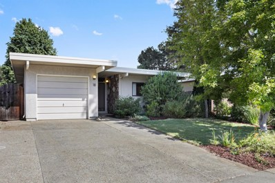 18 Chief Court, Sacramento, CA 95833 - MLS#: 18063392