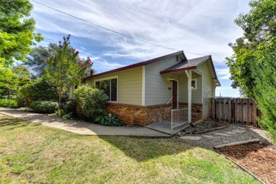 169 Judy Drive, Placerville, CA 95667 - MLS#: 18063806