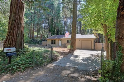 5498 Gilmore Road, Pollock Pines, CA 95726 - MLS#: 18063860