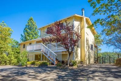 3121 Capitol Hill Drive, Placerville, CA 95667 - MLS#: 18064413
