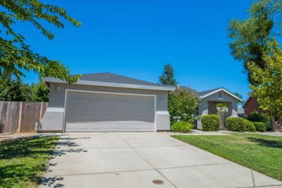 707 Rich Court, Wheatland, CA 95692 - MLS#: 18064434
