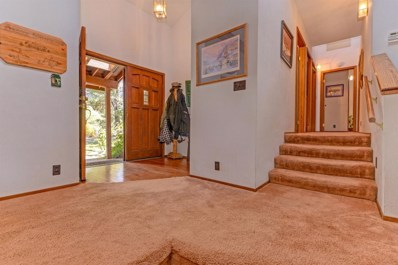 22549 Madrone Drive, Pioneer, CA 95666 - MLS#: 18064441