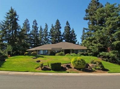 10120 Del Almendra Drive, Oakdale, CA 95361 - MLS#: 18064789