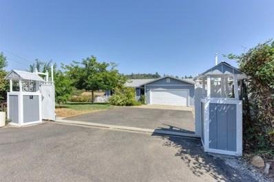 4649 Holly Drive, Shingle Springs, CA 95682 - MLS#: 18066172
