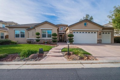 33547 Wildwing Drive, Woodland, CA 95695 - MLS#: 18066304