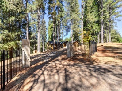 5032 Mount Pleasant, Grizzly Flats, CA 95636 - MLS#: 18067005