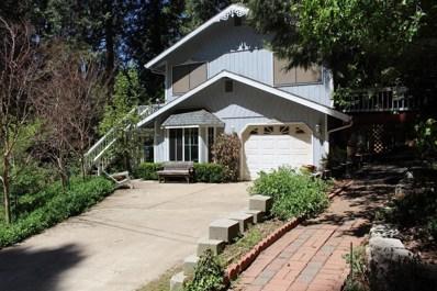 2770 Douglas Fir Drive, Camino, CA 95709 - MLS#: 18067767