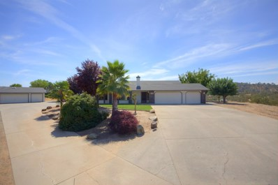 1531 Papoose Drive, Copperopolis, CA 95228 - MLS#: 18068010