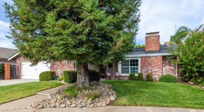 9113 Buckskin Court, Elk Grove, CA 95624 - MLS#: 18068278