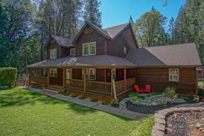 13800 Colfax Hwy, Grass Valley, CA 95945 - MLS#: 18068281
