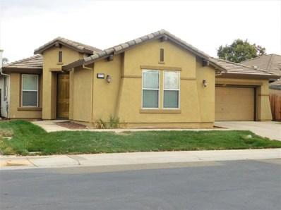 9771 Roedell Way, Elk Grove, CA 95624 - MLS#: 18068311