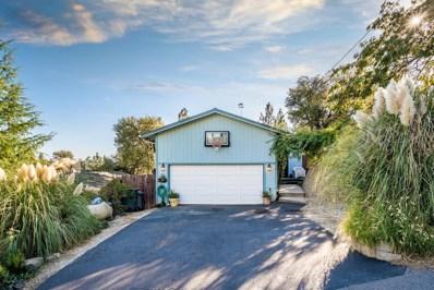 236 Scholtz Avenue, Colfax, CA 95713 - MLS#: 18068453