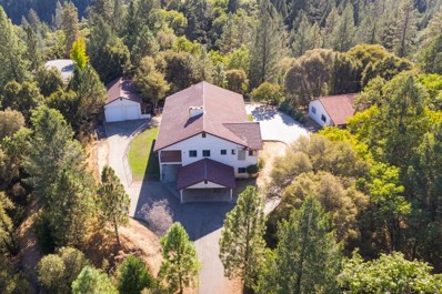 22935 Pine Hollow Road, Colfax, CA 95713 - MLS#: 18068698