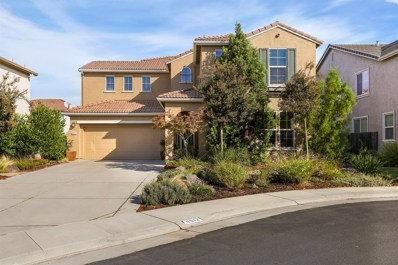 6913 Riqueza Court, Elk Grove, CA 95757 - MLS#: 18069102