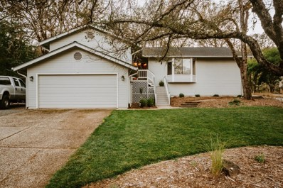 14204 Torrey Pines Drive, Auburn, CA 95602 - MLS#: 18069722