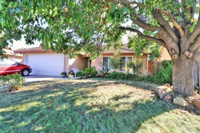 9028 Amador Valley Court, Sacramento, CA 95829 - MLS#: 18069821