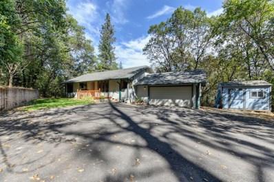 519 Greenwood Drive, Meadow Vista, CA 95722 - MLS#: 18069929