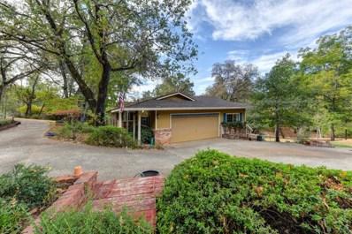 419 Greenwood Drive, Meadow Vista, CA 95722 - MLS#: 18069969
