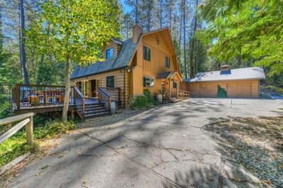 13066 Aqueduct Grove Road, Pine Grove, CA 95665 - MLS#: 18070071