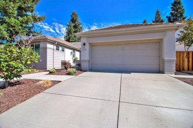 3748 Grand Point Lane, Elk Grove, CA 95758 - MLS#: 18070188