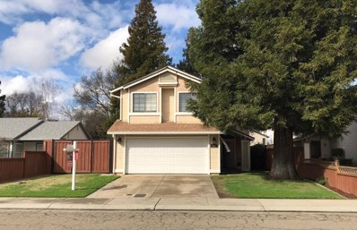1801 Amber Leaf Way, Lodi, CA 95242 - MLS#: 18070881