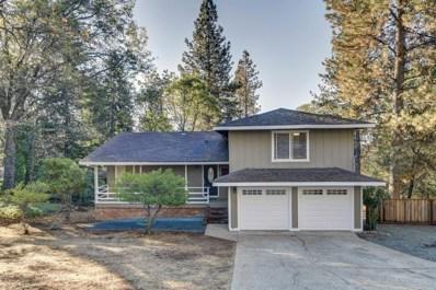 11931 Alta Sierra Drive, Grass Valley, CA 95949 - MLS#: 18071008