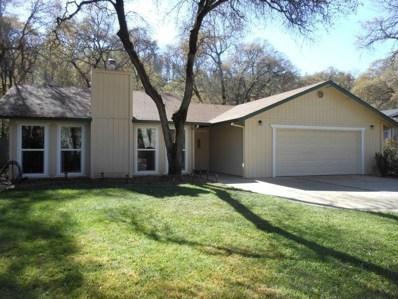 14182 Torrey Pines Drive, Auburn, CA 95602 - MLS#: 18071316