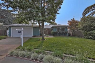 8410 Hollins Court, Sacramento, CA 95826 - MLS#: 18071381
