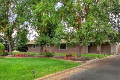 11194 Alta Mesa Road, Wilton, CA 95693 - MLS#: 18071416
