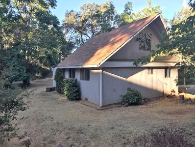 340  Canal, Placerville, CA 95667 - MLS#: 18071576