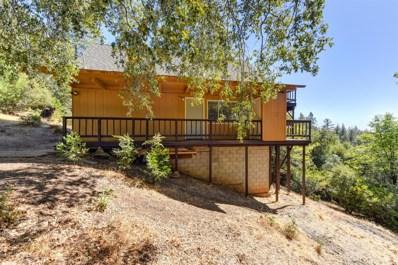 12804 Bonnefoy Road, Pine Grove, CA 95665 - MLS#: 18071677
