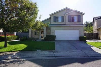 1878 Torrey Pines Court, Stockton, CA 95206 - MLS#: 18071712