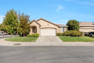 5317 Silhouette Court, Elk Grove, CA 95757 - MLS#: 18071886