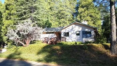 3321 Mercury Trail, Pollock Pines, CA 95726 - MLS#: 18072526