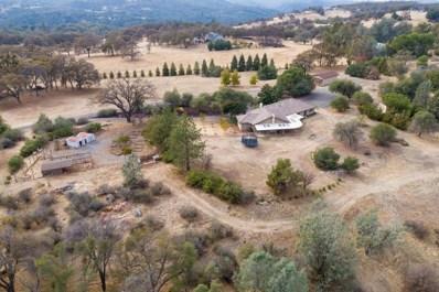 4141 Pleasant Ranch Road, Placerville, CA 95667 - #: 18072594