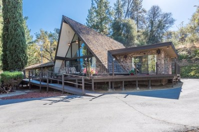 540 Forni Road, Placerville, CA 95667 - MLS#: 18072988