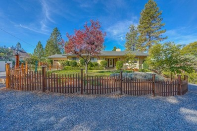 20850 Warner Rd, Pine Grove, CA 95665 - MLS#: 18073029