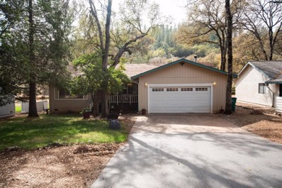 14160 Torrey Pines Drive, Auburn, CA 95602 - MLS#: 18073033