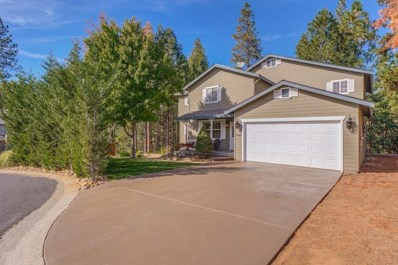 13481 Marko Lane, Pine Grove, CA 95665 - MLS#: 18073539
