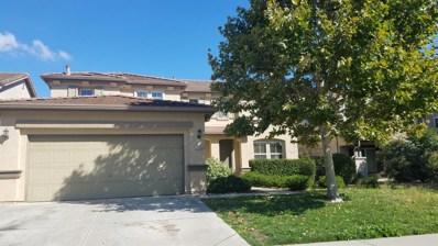 10165 Brian Kelly Way, Elk Grove, CA 95757 - MLS#: 18073858