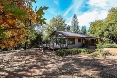 5687 Gold Trail Road, Wilseyville, CA 95257 - MLS#: 18073891