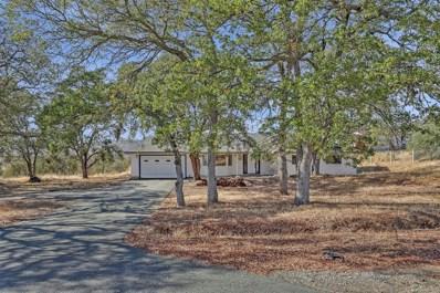 2318 Hartvickson, Valley Springs, CA 95252 - MLS#: 18074404