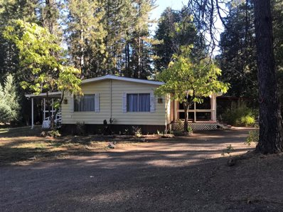 10230 Holtzel Road, Coulterville, CA 95311 - MLS#: 18075013