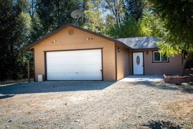 14855  Diamond View Drive, Pioneer, CA 95666 - MLS#: 18075169