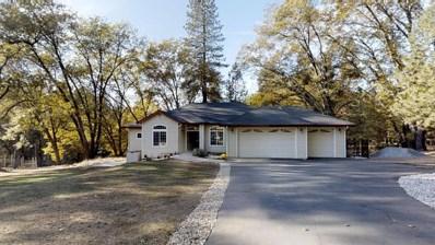 1955 Meadow Oak Lane, Meadow Vista, CA 95722 - MLS#: 18075586