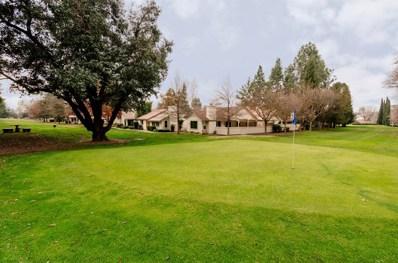 3166 Swallows Nest Drive, Sacramento, CA 95833 - MLS#: 18075872