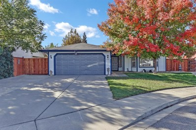 248 Caballos Court, Oakdale, CA 95361 - MLS#: 18075873