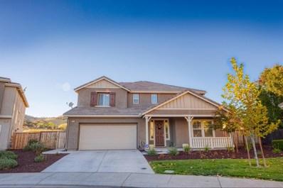 9553 California Oak Circle, Patterson, CA 95363 - MLS#: 18076025