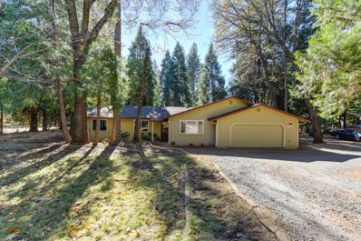 5466 Cold Springs Drive, Foresthill, CA 95631 - MLS#: 18076162
