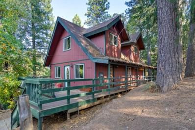 6864 Diablo View Trail, Placerville, CA 95667 - #: 18076310